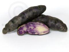 PERU AZUL