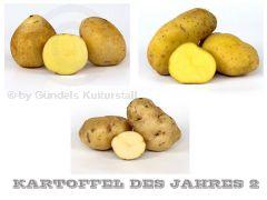 Edition KARTOFFEL DES JAHRES 2