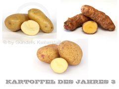 Edition KARTOFFEL DES JAHRES 3
